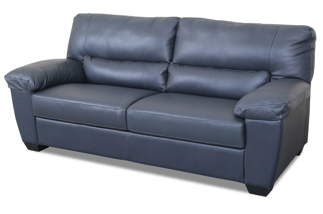 Editions Leder 2er Sofa U172 Anthrazit Mit Federkern Echt Leder Sofa Couch Ebay